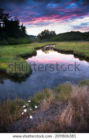 Island Wetland. Sunset on an island in the San Juan Island archipelago of Puget Sound in the great Pacific Northwest. This grassland is located on the coastline of the Salish Sea in Washington State. - stock photo