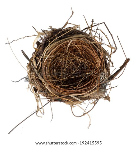 isolate bird nest on white background - stock photo