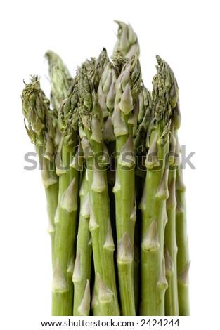 Isolated Asparagus - stock photo