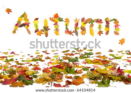 "Isolated autumn leaves with a ""Autumn"" text message - stock photo"