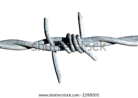 Isolated barb wire fragment - stock photo