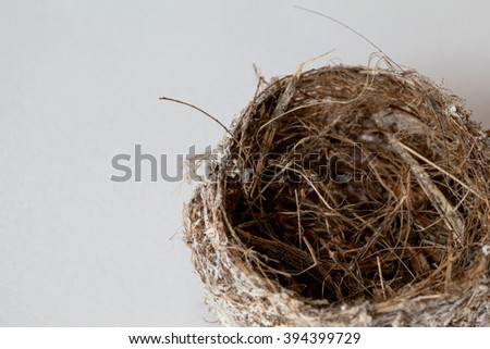 Isolated Bird Nest on white background