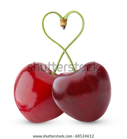 Isolated cherries. Pair of sweet cherry fruits with heart shaped stem isolated on white background