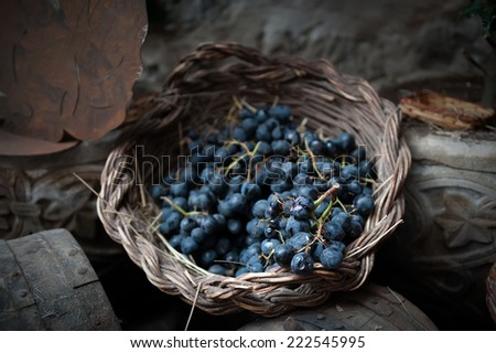isolated clusters of grapes on wicker basket - stock photo