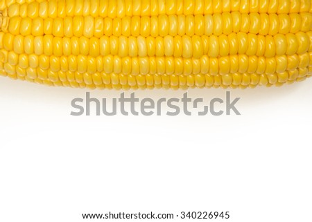 Isolated Corn on the top of white background - stock photo