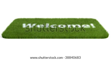 isolated doormat of grass on white background - stock photo