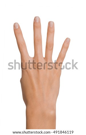 Isolated Empty open woman female hand in a position of number Four on a white background
