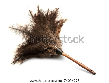 isolated feather duster - stock photo
