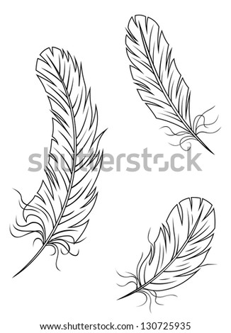 Isolated feathers and quills on white background for medieval or education concept design. Vector version also available in gallery - stock photo