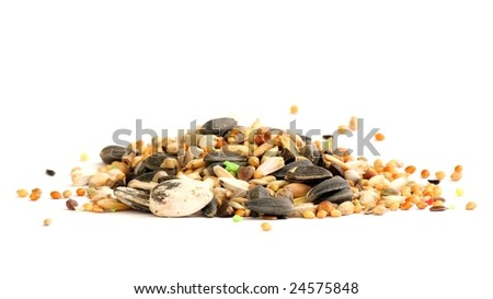 Isolated fodder for small parrots - stock photo