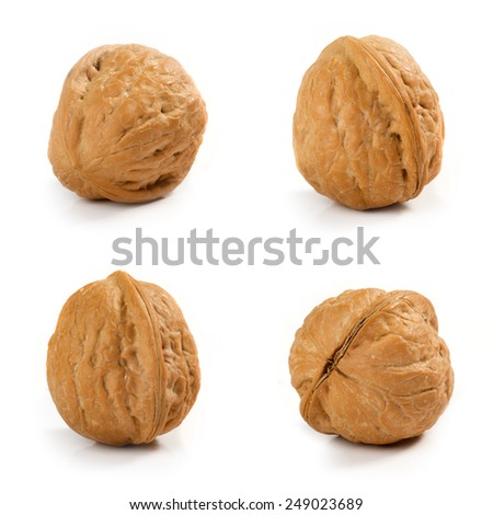Isolated four walnuts on white background - stock photo