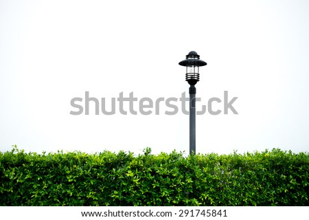 Isolated garden lamp and plant bush - stock photo