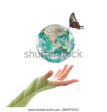 Isolated green planet with butterfly drinking water over human hand with leaf pattern texture on white background : World environment day concept: Elements of this image furnished by NASA  - stock photo