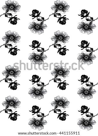 Isolated greeting wallpaper decoration rose floral tropical spring petal flower leaf botanical circle summer blossom bloom card feminine female fashion abstract white black arrangement illustration - stock photo