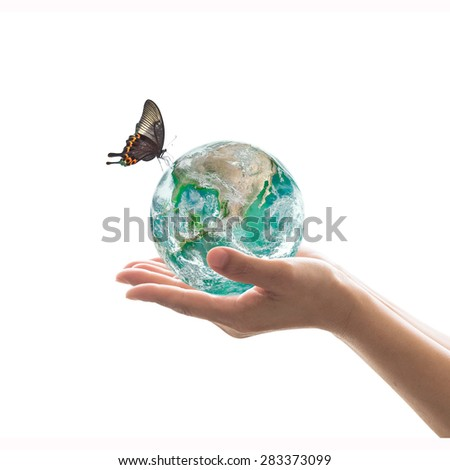 Isolated hands holding green planet with butterfly on white background : World healthy environment and hydrography concept: Elements of this image furnished by NASA   - stock photo