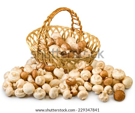Isolated image of champignons in basket - stock photo