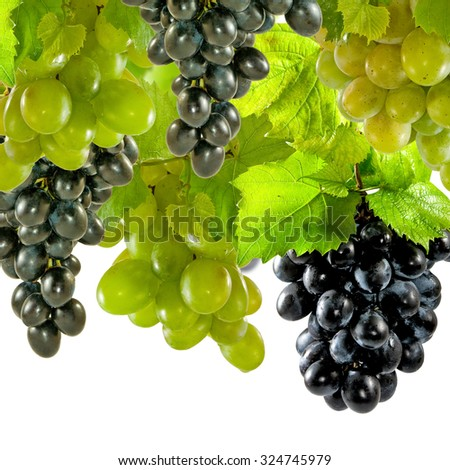 Isolated image of grapes on a white background close-up