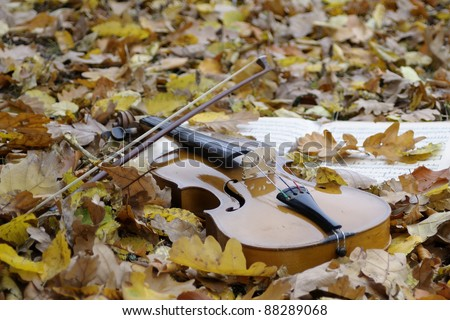 isolated instrument in fall season