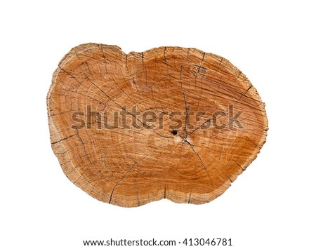 Isolated log stump and cross section texture with clipping path - stock photo