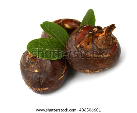Isolated macro image of water chestnut with clipping path