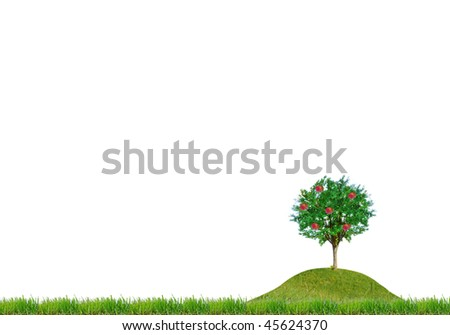 isolated meadow - stock photo