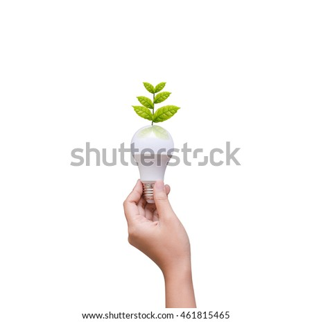Isolated of woman hand holding LED bulb on white background