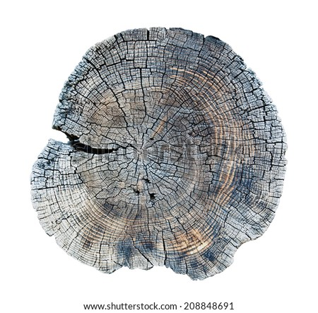 isolated old wood texture  - stock photo