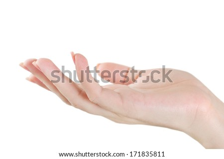 Isolated open hand on white background