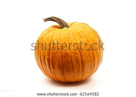 isolated orange pumpkins  for halloween decoration - stock photo