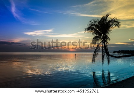 Isolated palm tree over water in black and white in peaceful sunset landscape on the beach in the island of Koh Phangan, Thailand - stock photo