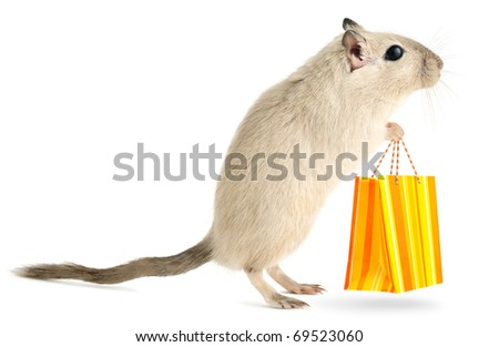Isolated pet mouse. Little gerbil stands with shopping bag isolated on white background