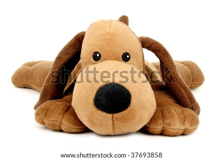 Isolated plush toy dog on white background - stock photo