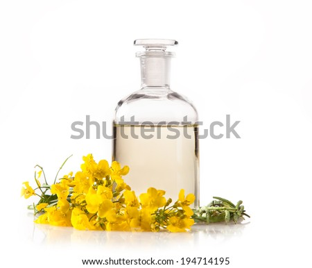 Isolated rape oil with blossoms on white background - stock photo