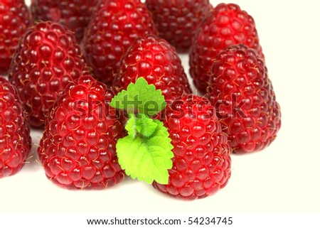 Isolated raspberry fruits with lemon balm