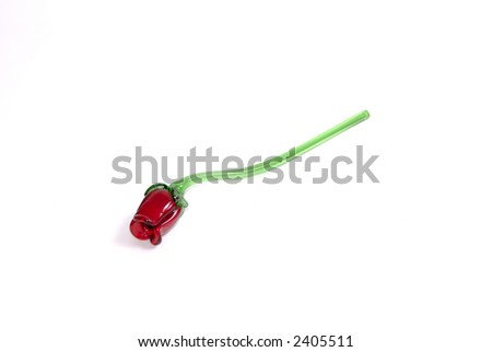 Isolated red rose on white with room for text. - stock photo