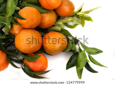 isolated ripe tangerines  with leaves