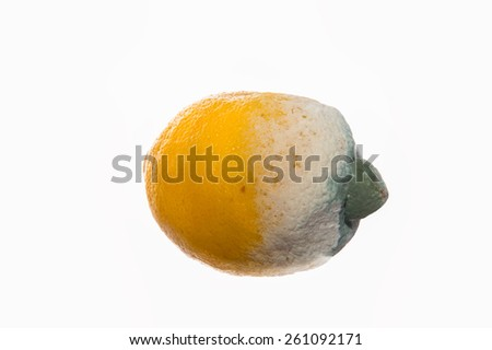 Isolated rotten lemon on a white background