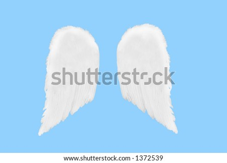 Isolated Separated Angel Wings on Blue Solid Background - stock photo