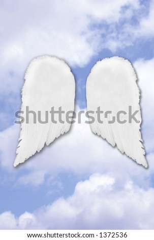 Isolated Separated Angel Wings on Fantasy Heavenly Sky - stock photo