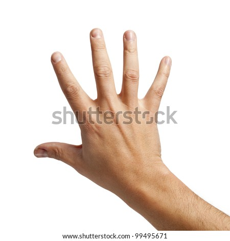 Isolated shot of the back of a hand - stock photo