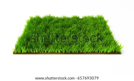 Isolated square flowerbed with grass. 3d illustration, 3d rendering.