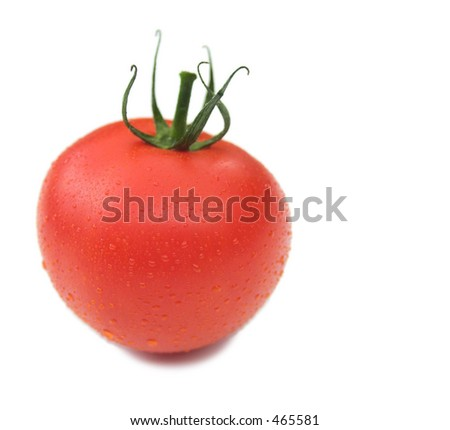 Isolated tomato with water droplets