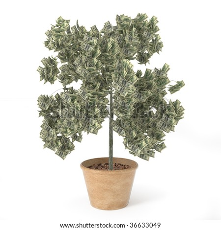 isolated tree with dollars as leafs - stock photo