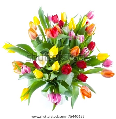 isolated vase with multiple colors tulips. - stock photo