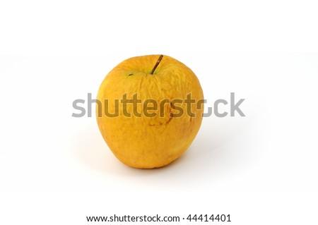 isolated wrinkled apple on white background - stock photo