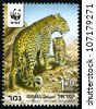 "ISRAEL - CIRCA 2011: An used Israeli postage stamp with series ""Endangered Species - Leopard"", showing photo of Panthera pardus saxicolor with a cub; series, circa 2011 - stock photo"