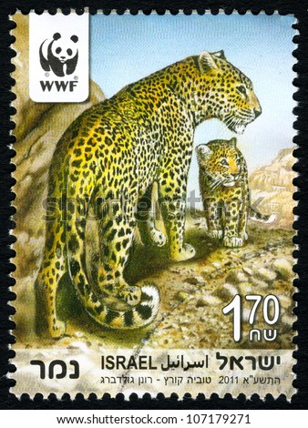 """ISRAEL - CIRCA 2011: An used Israeli postage stamp with series """"Endangered Species - Leopard"""", showing photo of Panthera pardus saxicolor with a cub; series, circa 2011 - stock photo"""