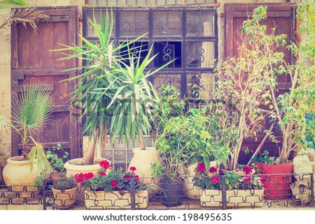 Israel Window Decorated with Fresh Flowers in Jaffa, Retro Effect - stock photo