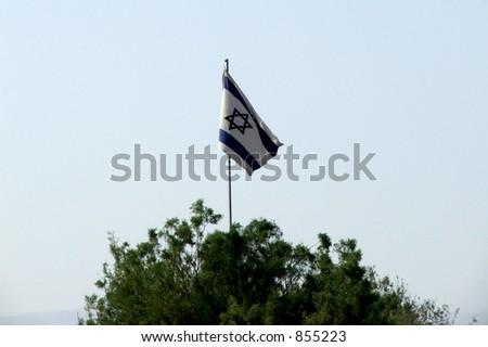 Israeli flag - stock photo