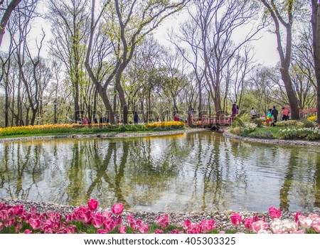 ISTANBUL, TURKEY - APRIL 18, 2015: There is a lot different tulips big garden from Emirgan, Istanbul, Each year during April there is festival in Istanbul